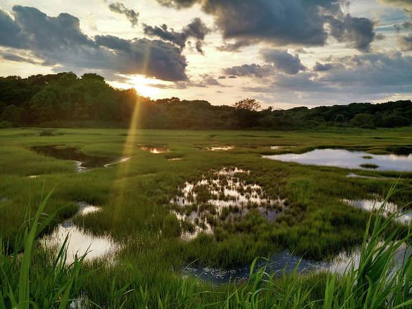 Photograph - Barn Island Wetlands by Kirkodd Photography Of New England
