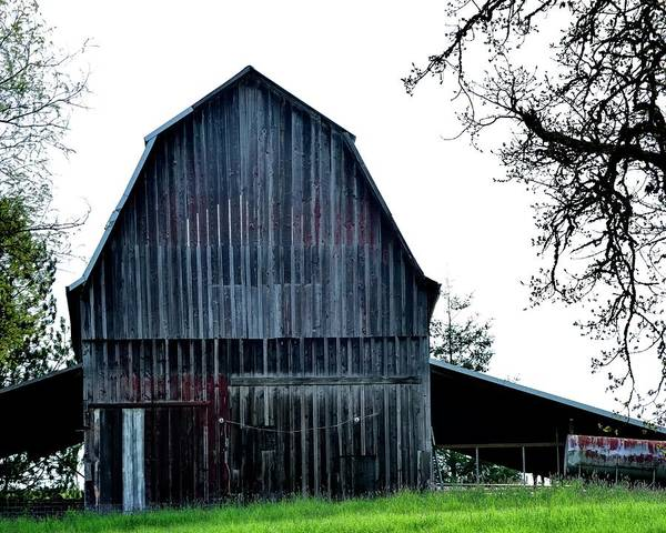 Photograph - Barn On The Hill 2 by Jerry Sodorff