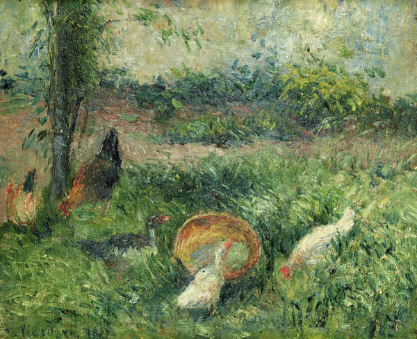 Wall Art - Painting - Barnyard With Hens And Ducks by Camille Pissarro