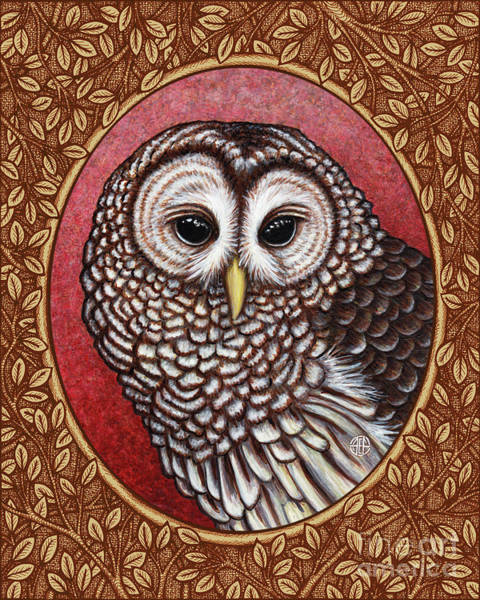 Painting - Barred Owl Portrait - Brown Border by Amy E Fraser
