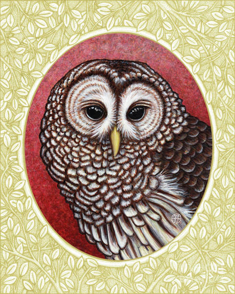 Painting - Barred Owl Portrait - Cream Border by Amy E Fraser