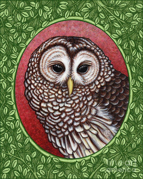Painting - Barred Owl Portrait - Green Border by Amy E Fraser