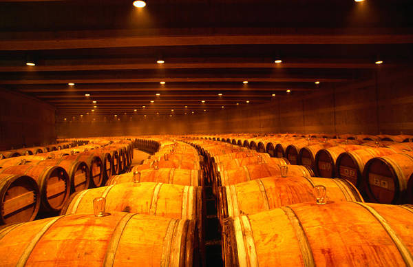 Napa Valley Photograph - Barrel Room At Opus One, Napa Valley by Oliver Strewe