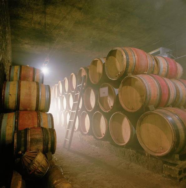 Winemaking Photograph - Barrels In Wine Cellar, France by Picavet