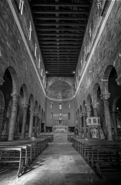 Photograph - Basilica Of San Frediano Bw Lucca Italy by Joan Carroll