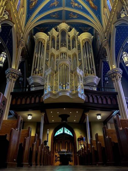 Wall Art - Photograph - Basilica Of The Sacred Heart by Beth Parin