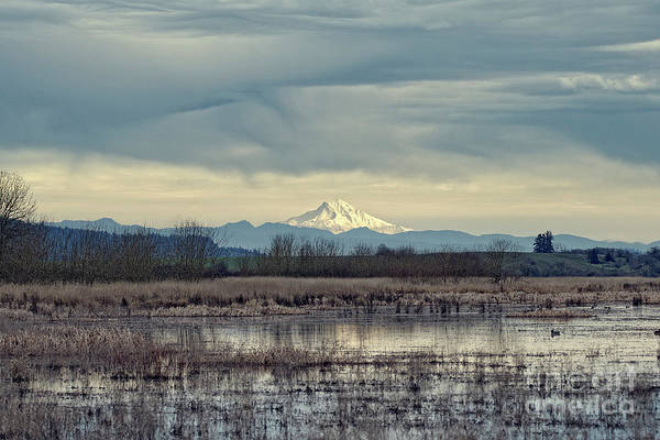 Photograph - Baskett Slough National Wildlife Refuge by Craig Leaper