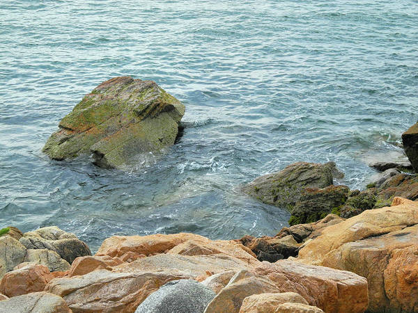 Photograph - Bass Harbor Cliffs At Acadia by Lynda Lehmann