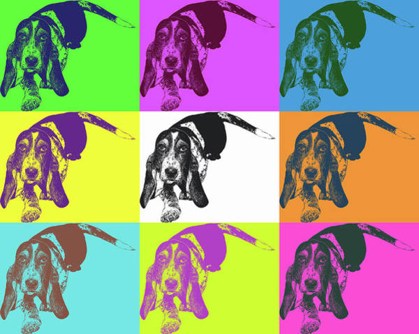 Something Different Photograph - Basset Meets Warhol by Emily Kay