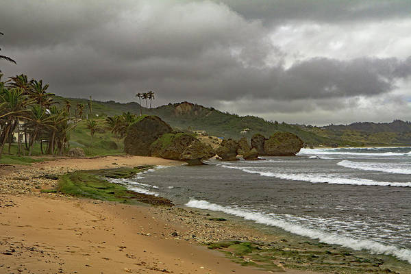Photograph - Bathsheba Beach by Tony Murtagh