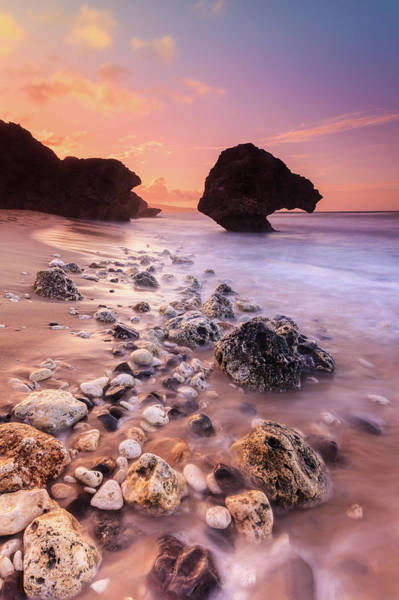 Barbados Photograph - Bathsheba Sunset by Enzo Figueres