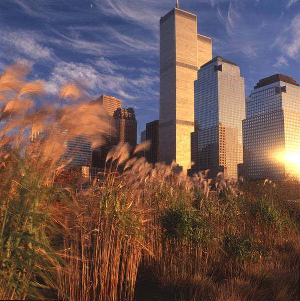 Battery Park Wall Art - Photograph - Battery Park With World Trade Towers by Richard Felber
