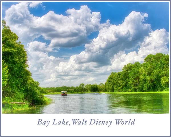 Photograph - Bay Lake, Walt Disney World by A Gurmankin