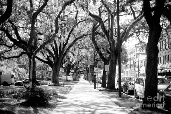 Wall Art - Photograph - Bay Street Savannah by John Rizzuto