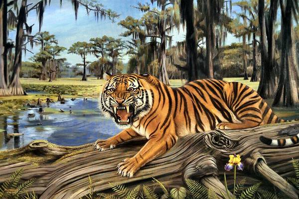 College Campus Painting - Bayou Mike Of Louisiana by Mike Roberts