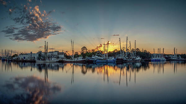Photograph - Bayou Rays Panorama by Brad Boland