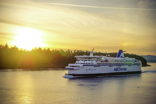 Photograph - Bc Ferries by Marilyn Wilson