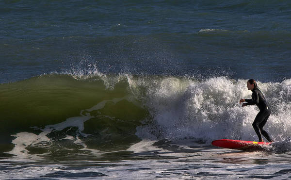 Bodyboard Photograph - Be Nice by Michael Gordon