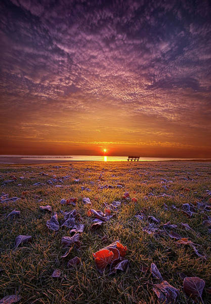 Photograph - Be The Light by Phil Koch
