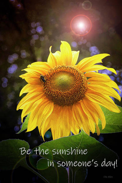 Photograph - Be The Sunshine  by Ola Allen