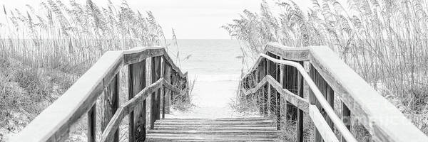 Wall Art - Photograph - Beach Boardwalk And Sea Oats Florida Black And White Panorama  by Paul Velgos