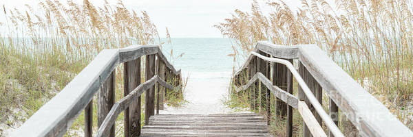 Wall Art - Photograph - Beach Boardwalk And Sea Oats Grass Black And White Panorama by Paul Velgos