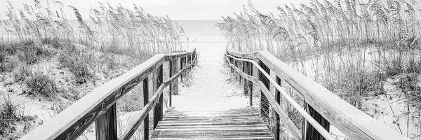 Wall Art - Photograph - Beach Boardwalk Pensacola Black And White Panorama Photo by Paul Velgos