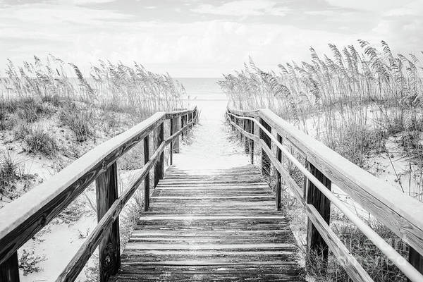 Wall Art - Photograph - Beach Boardwalk Pensacola Florida Black And White Photo by Paul Velgos
