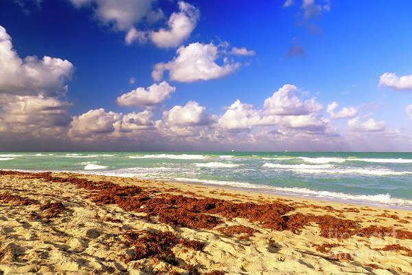 Photograph - Beach Day At South Beach Florida by John Rizzuto