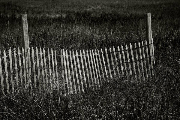 Photograph - Beach Fence by Bud Simpson