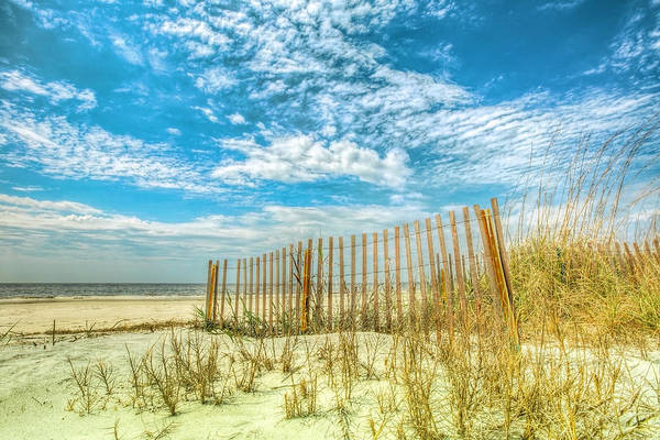 Photograph - Beach Fences At The Dunes by Debra and Dave Vanderlaan
