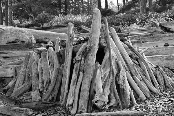 Photograph - Beach Fort by Jeni Gray