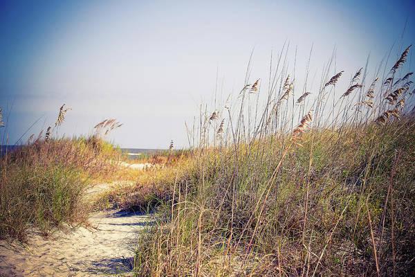 Wall Art - Photograph - Beach Grass Path by Susan Bryant