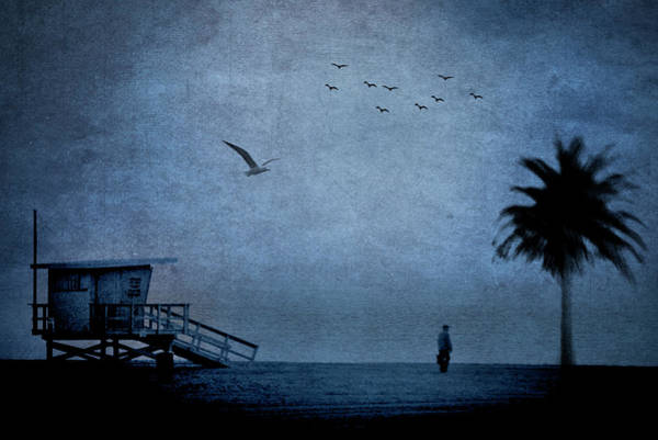 Photograph - Beach, Man, Tree, Birds by John Rodrigues