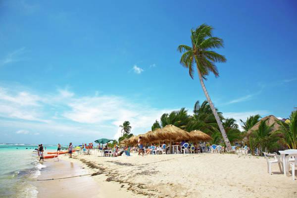 Palapa Wall Art - Photograph - Beach Of Costa Maya Mexico by Bill Diodato