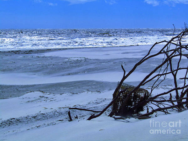 Photograph - Beach Post Florence by Robert Knight