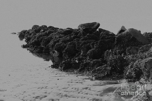 Photograph - Beach Rock Jetty by Dale Powell