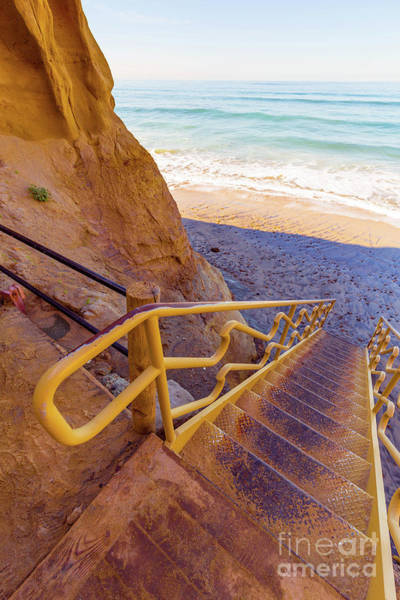 Wall Art - Photograph - Beach Trail Torrey Pines State Park by Edward Fielding