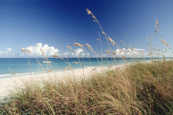 Palm Beach Photograph - Beach W Grass And Boat, Palm Beach, Fl by Katie Deits