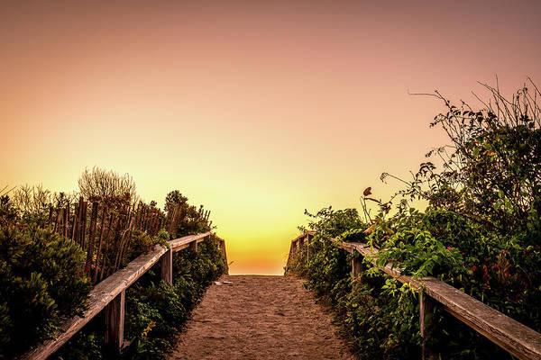 Photograph - Path Over The Dunes At Sunrise. by Jeff Sinon