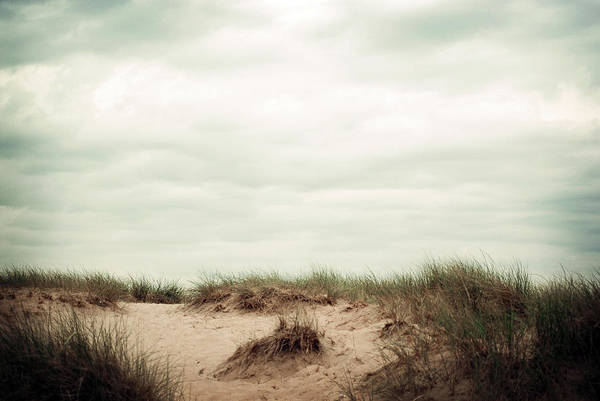 Photograph - Beaches by Michelle Wermuth