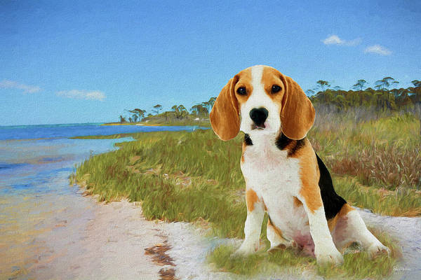 Painting - Beagle Puppy At The Cape - Painted by Ericamaxine Price