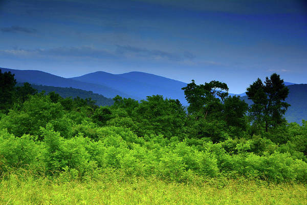 Photograph - Beahms Gap On Shenandoah National Park's Appalachian Trail  by Raymond Salani III