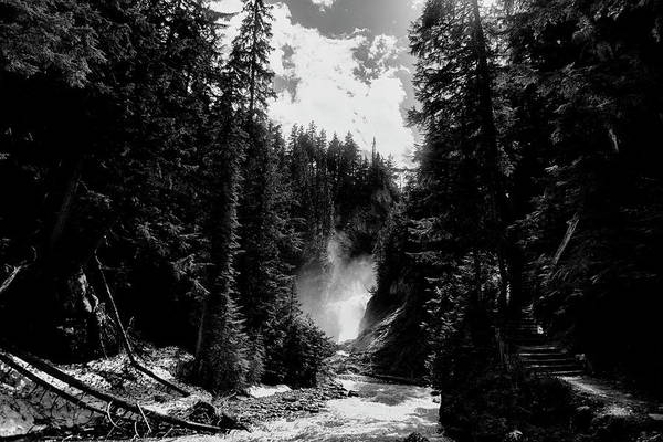 Wall Art - Photograph - Bear Creek Pathway In Black And White by Monte Arnold
