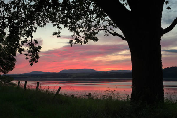 Photograph - Beauly Firth Sunset by Gavin MacRae
