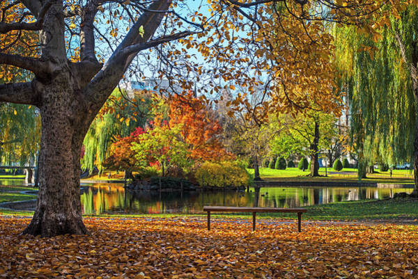 Photograph - Beautiful Autumn Colors In The Boston Public Garden Boston Ma by Toby McGuire
