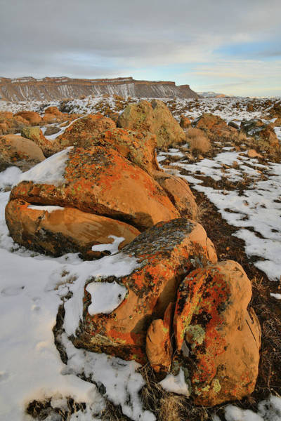 Photograph - Beautiful Boulders At The Book Cliffs by Ray Mathis