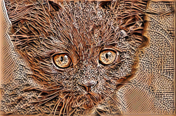 Digital Art - Beautiful Cat Art by Don Northup