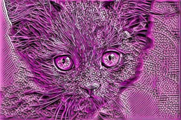 Digital Art - Beautiful Cat Art Purple by Don Northup