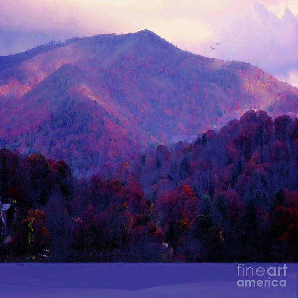 Asheville Mixed Media - Beautiful Changing Seasons by Zsanan Studio
